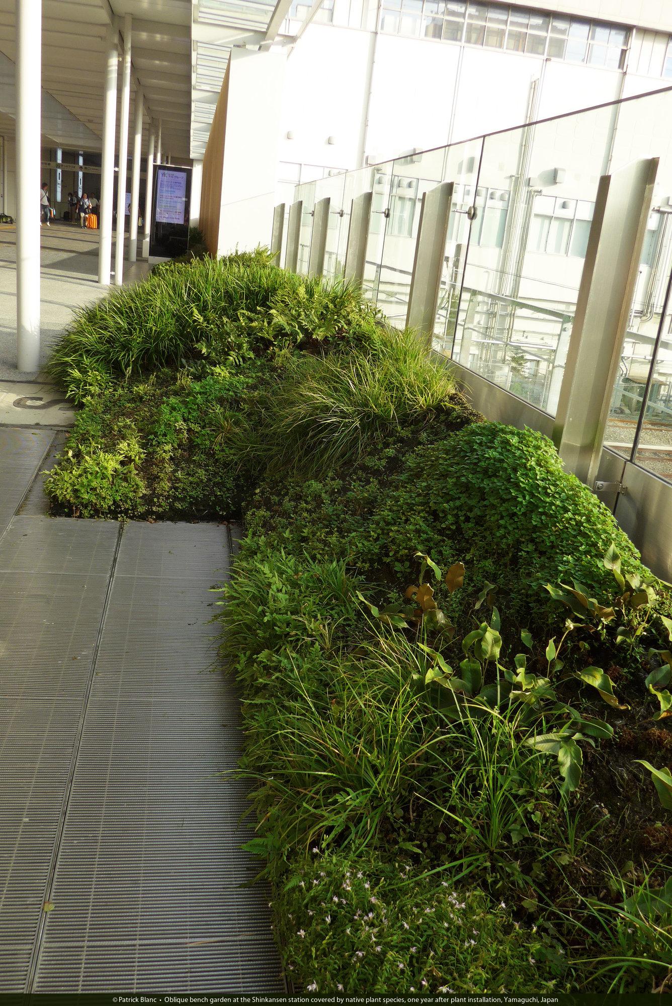 Swell Shin Yamaguchi Station Vertical Garden Patrick Blanc Short Links Chair Design For Home Short Linksinfo