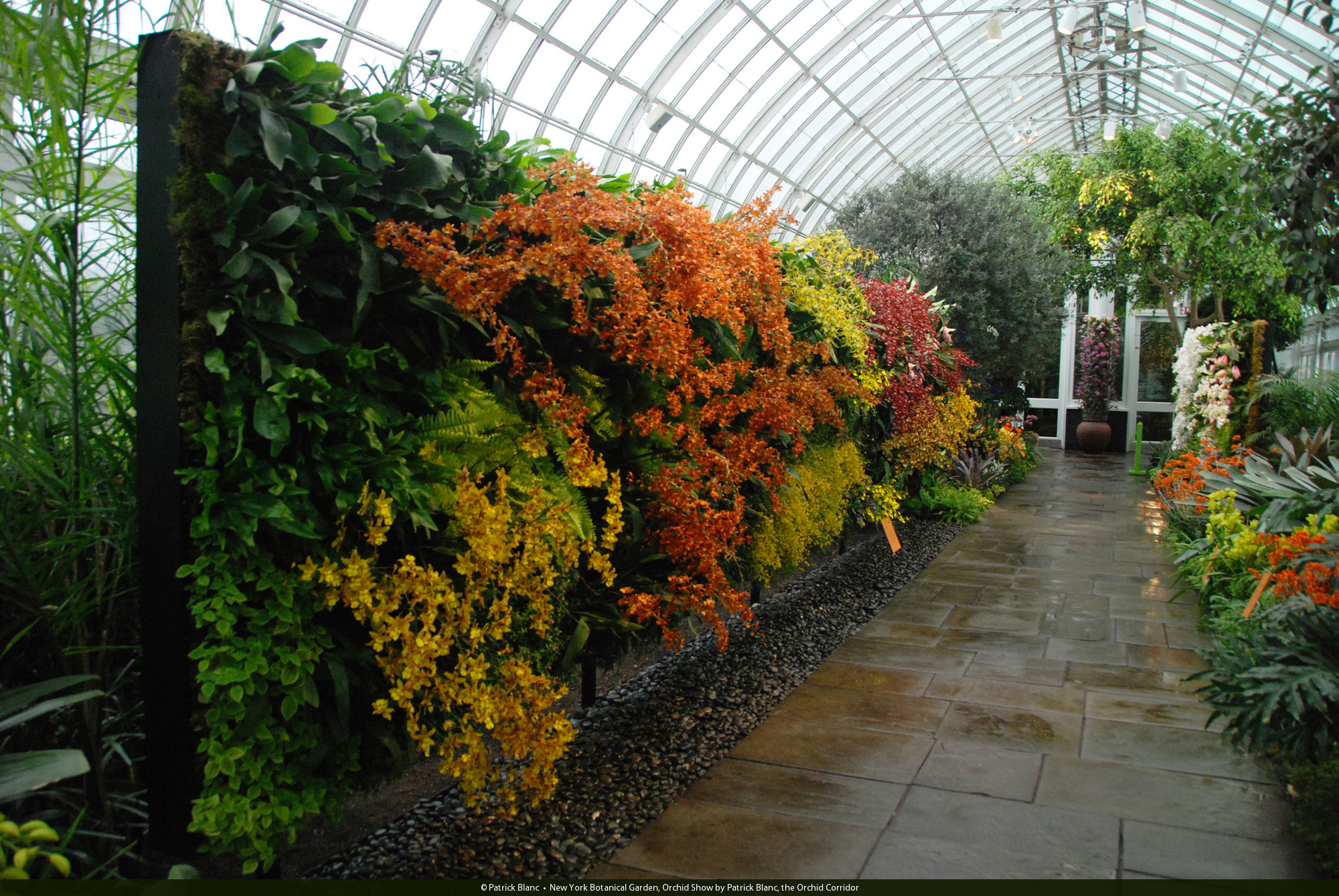 New York Botanical Garden, Orchid Expo 2012 | Vertical Garden ...