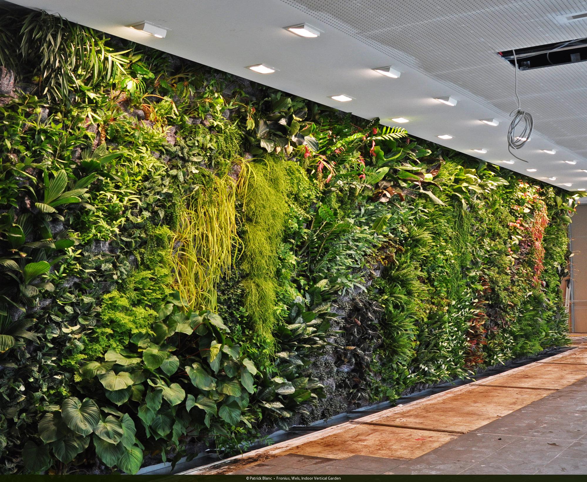 garden model vertical