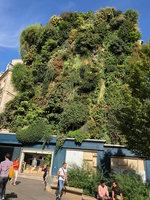 Paris | Vertical Garden Patrick Blanc