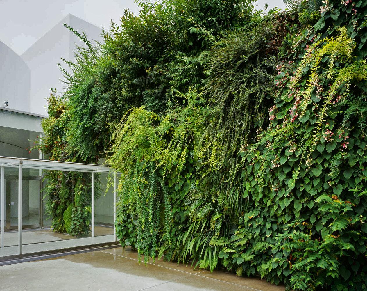 21st Century Museum, Green Bridge | Vertical Garden Patrick Blanc