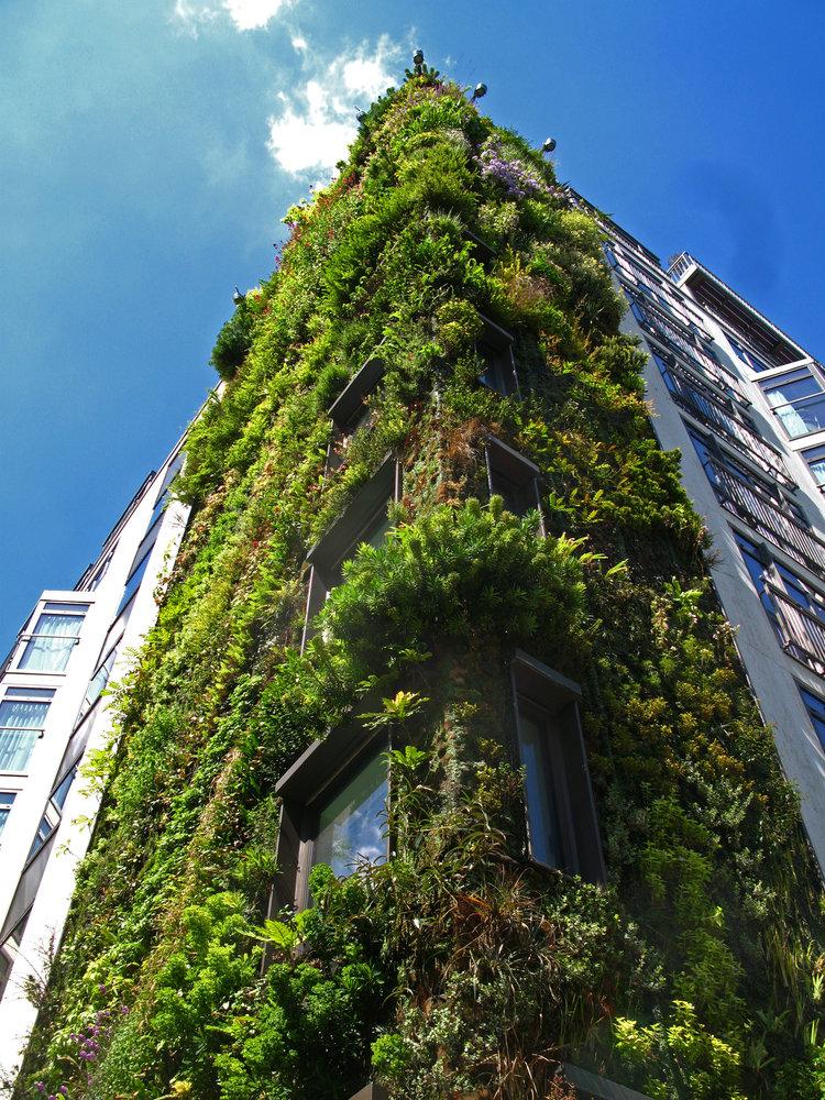 Athenaeum Hotel London Vertical Garden Patrick Blanc