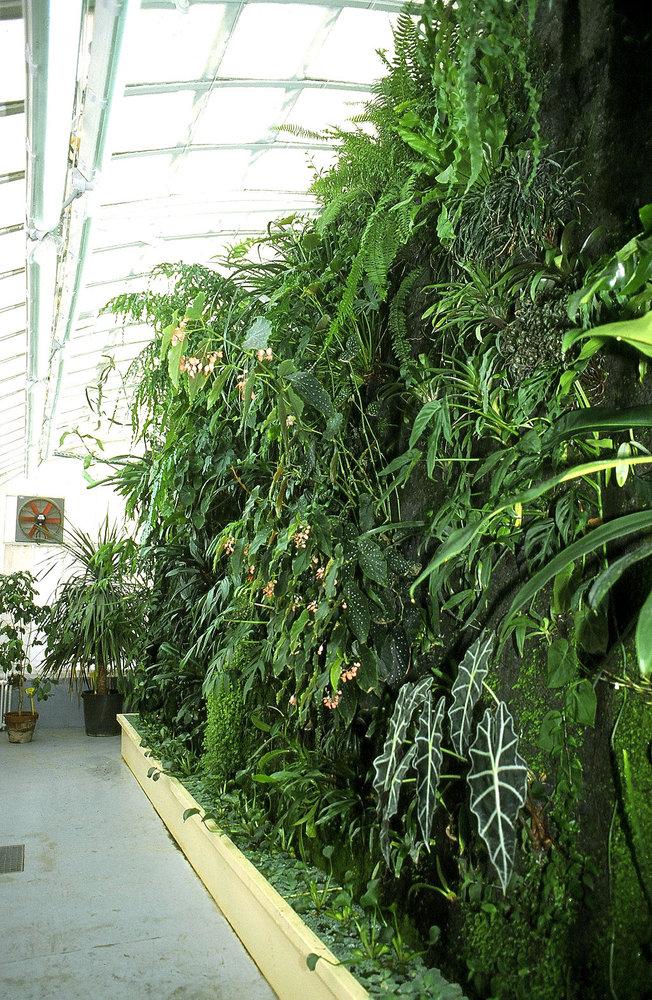 Serre du jardin botanique de toulouse mur vegetal patrick blanc - Serre de jardin adossee au mur ...