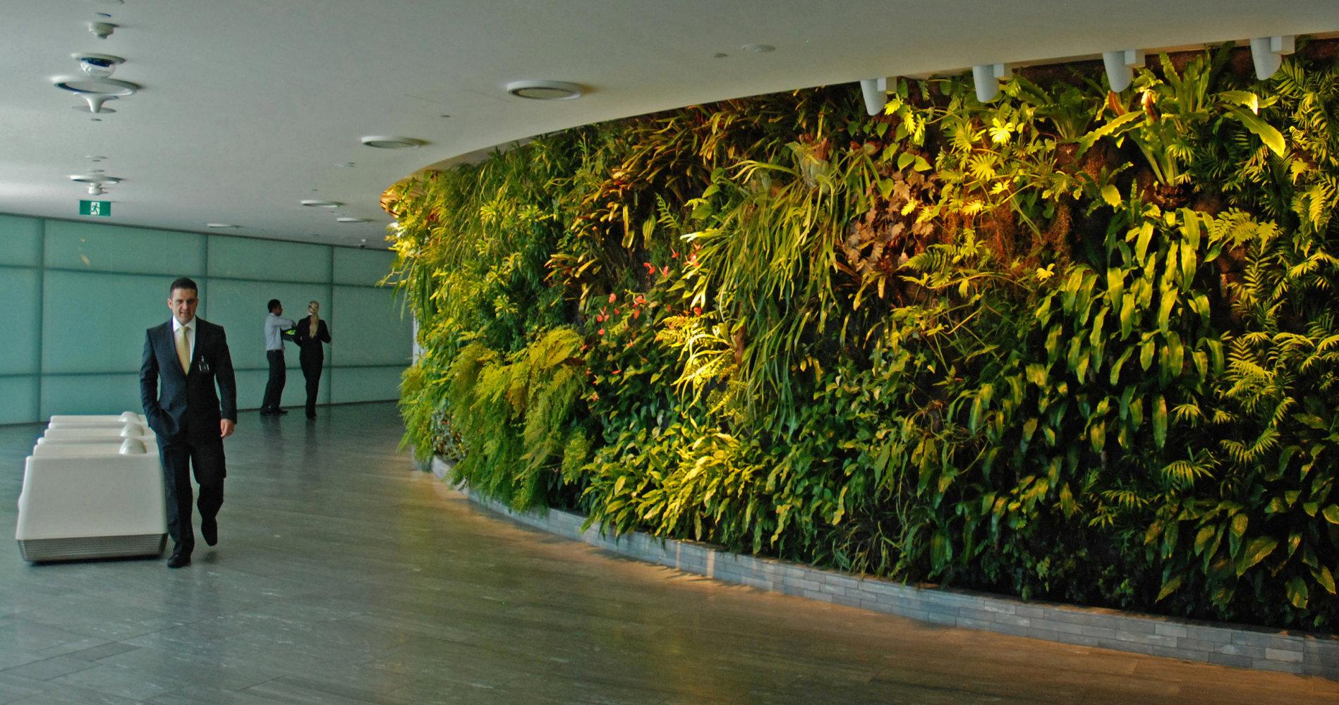 Qantas lounge sydney vertical garden patrick blanc for Landscape gardeners sydney