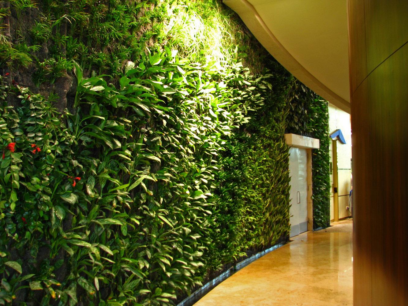 360 kuweit shopping mall vertical garden patrick blanc for Garden design kuwait