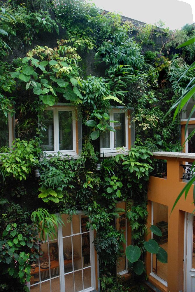 Patrick Blanc S House Vertical Garden Patrick Blanc