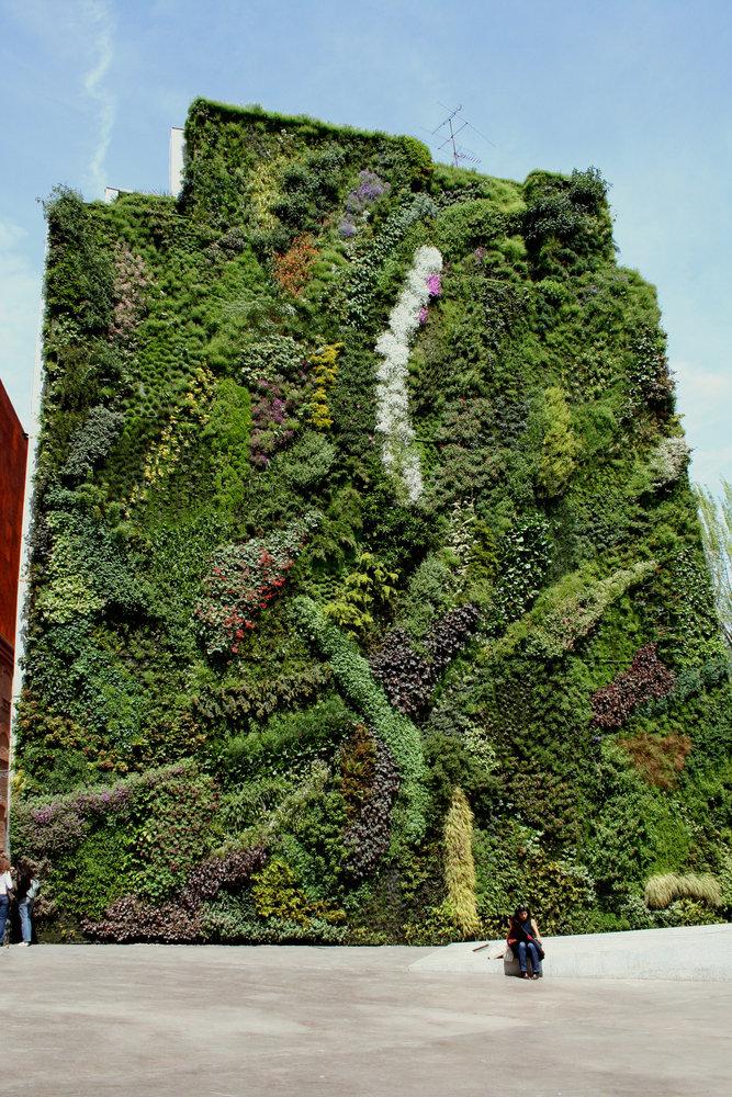 Caixa forum madrid vertical garden patrick blanc for Jardin vertical caixaforum