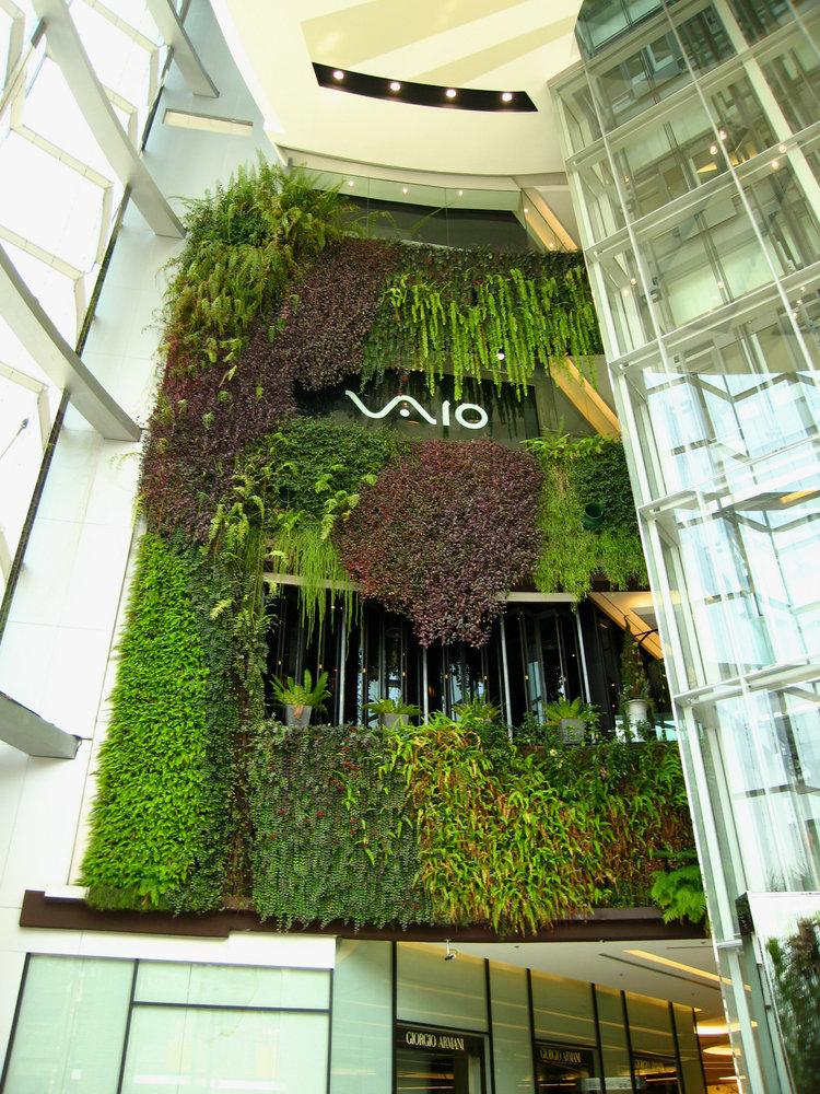 Siam Paragon Shopping Mall Vertical Garden Patrick Blanc