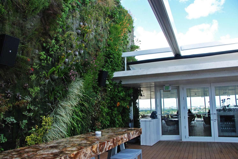 juvia restaurant miami vertical garden patrick blanc. Black Bedroom Furniture Sets. Home Design Ideas