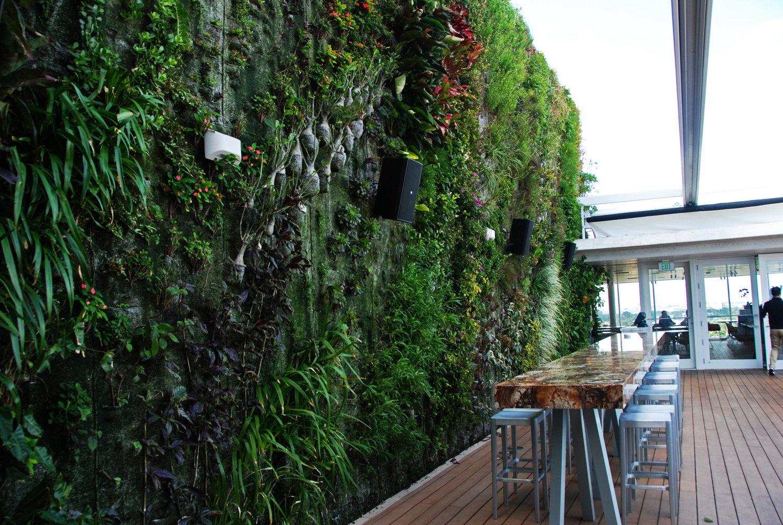 juvia restaurant mur vegetal patrick blanc. Black Bedroom Furniture Sets. Home Design Ideas