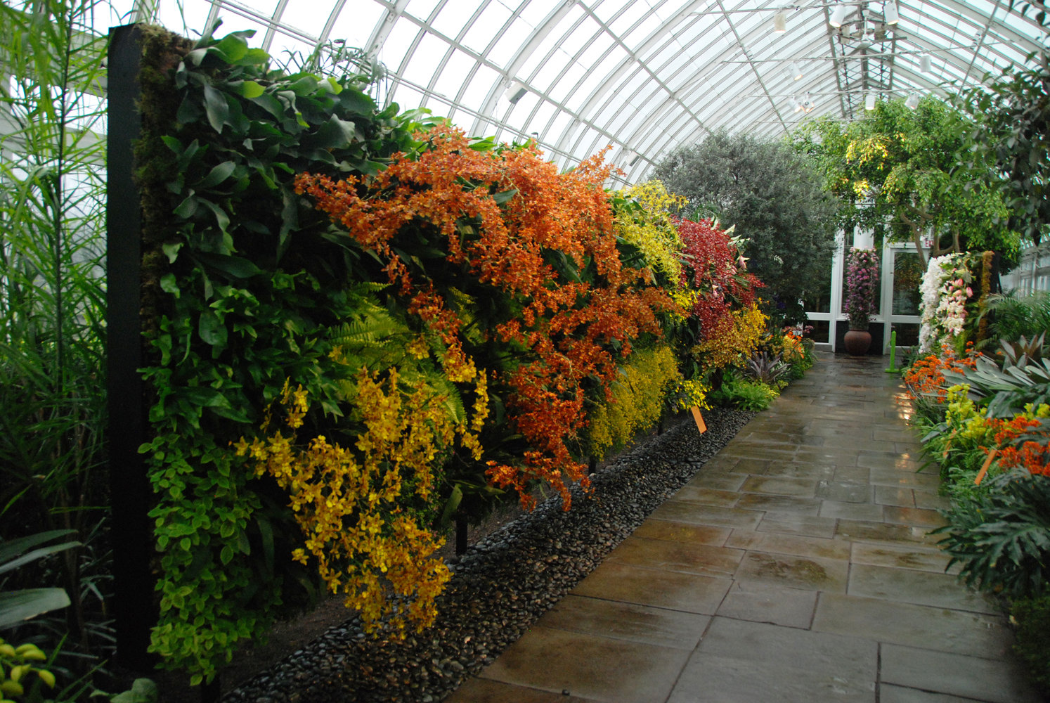 Image Gallery New York Botanical Gardens