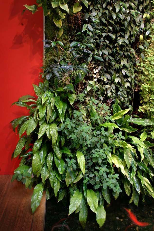 i guzzini paris vertical garden patrick blanc. Black Bedroom Furniture Sets. Home Design Ideas
