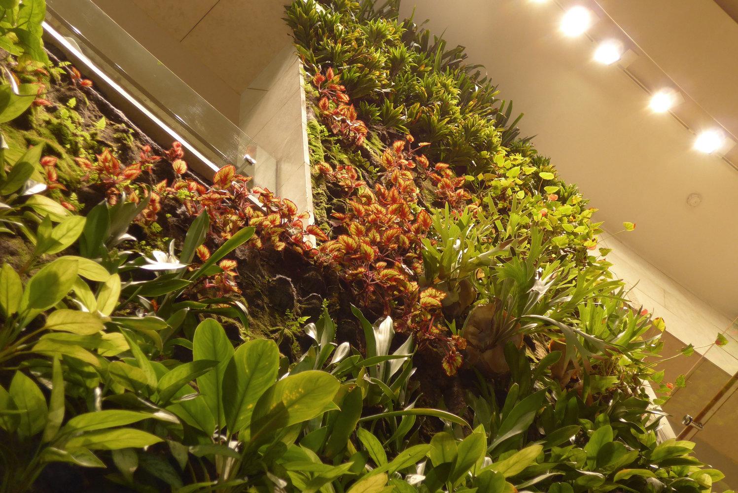 360 Mall Kuwait Vertical Garden Patrick Blanc