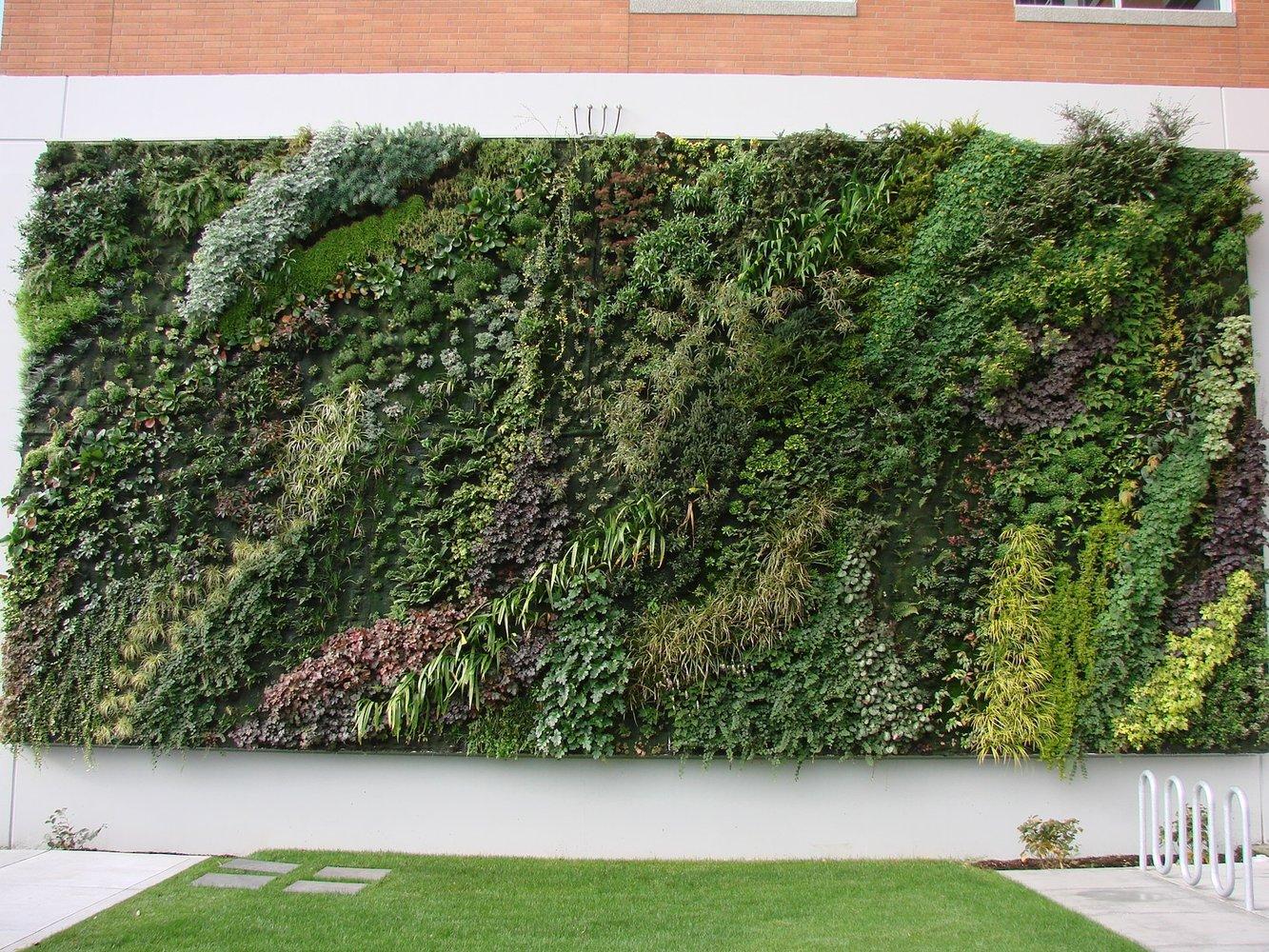 tacoma goodwill mur vegetal patrick blanc. Black Bedroom Furniture Sets. Home Design Ideas