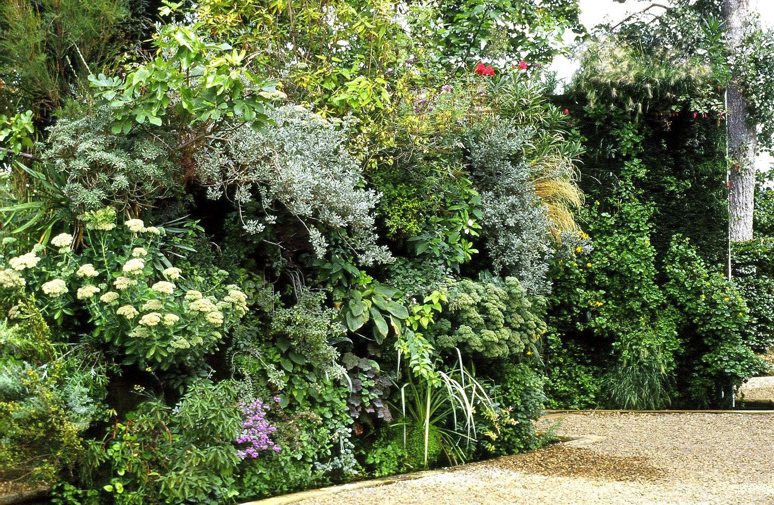 Mur vegetal patrick blanc - Patrick blanc mur vegetal ...