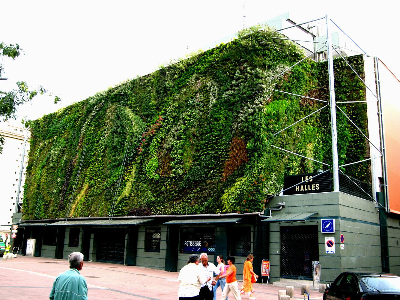 Halles avignon mur vegetal patrick blanc - Mur vegetal patrick blanc ...