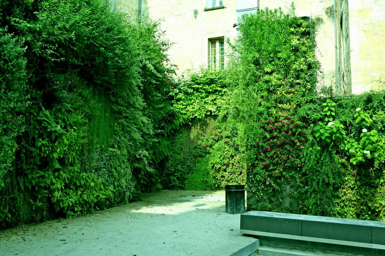 Square Vinet Vertical Garden Patrick Blanc