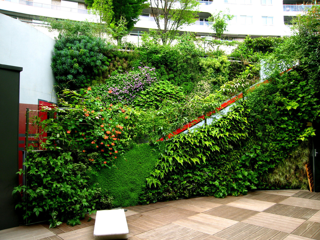 Ken Club Paris Vertical Garden Patrick Blanc