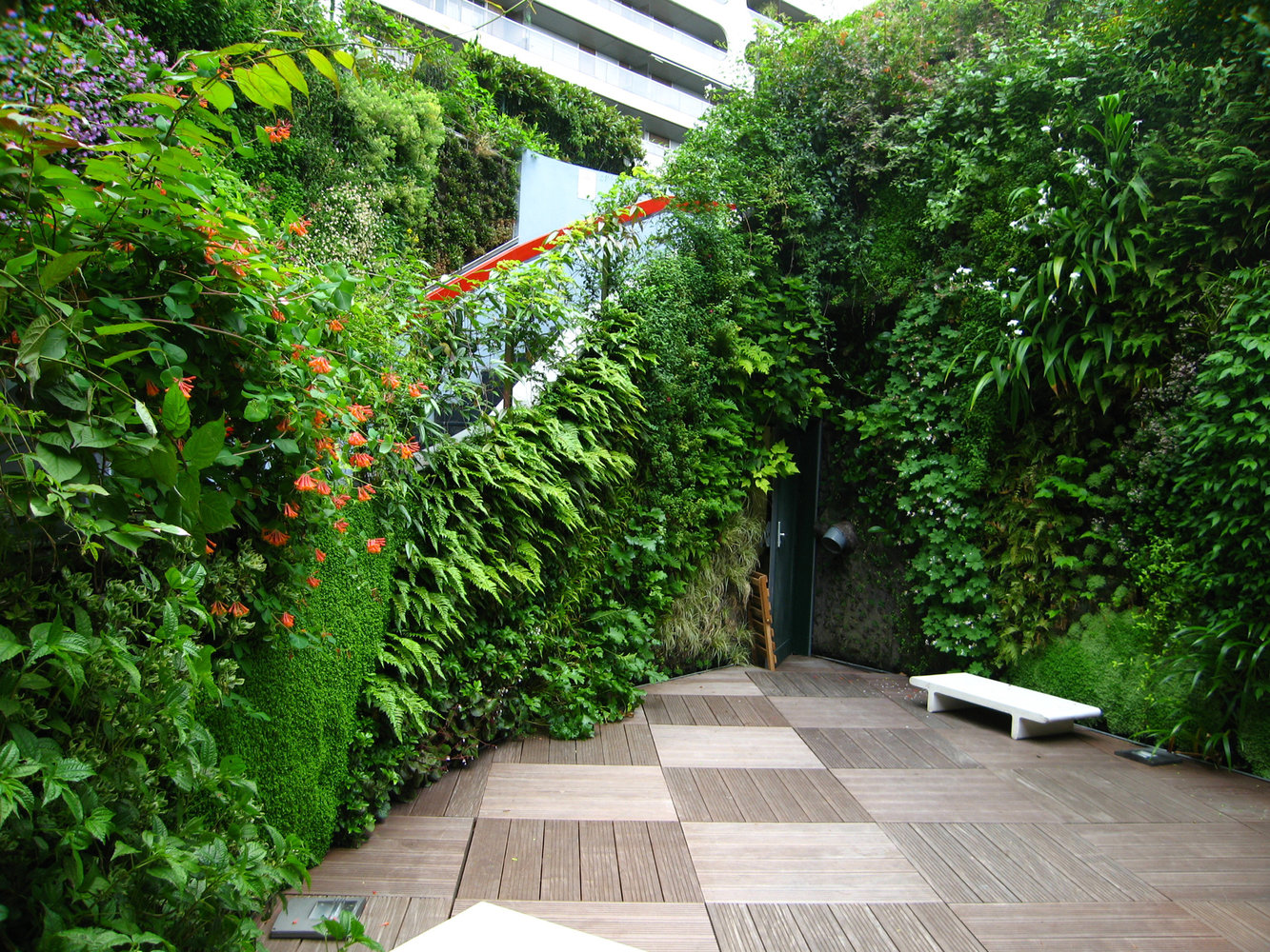 Ken Club Paris Vertical Garden Patrick Blanc