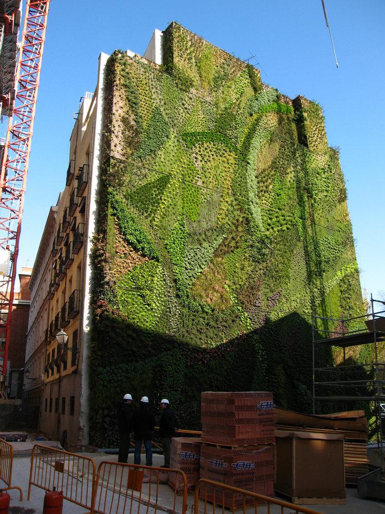 Caixa Forum, Madrid, 2 Months After Installation, Dec. 2006