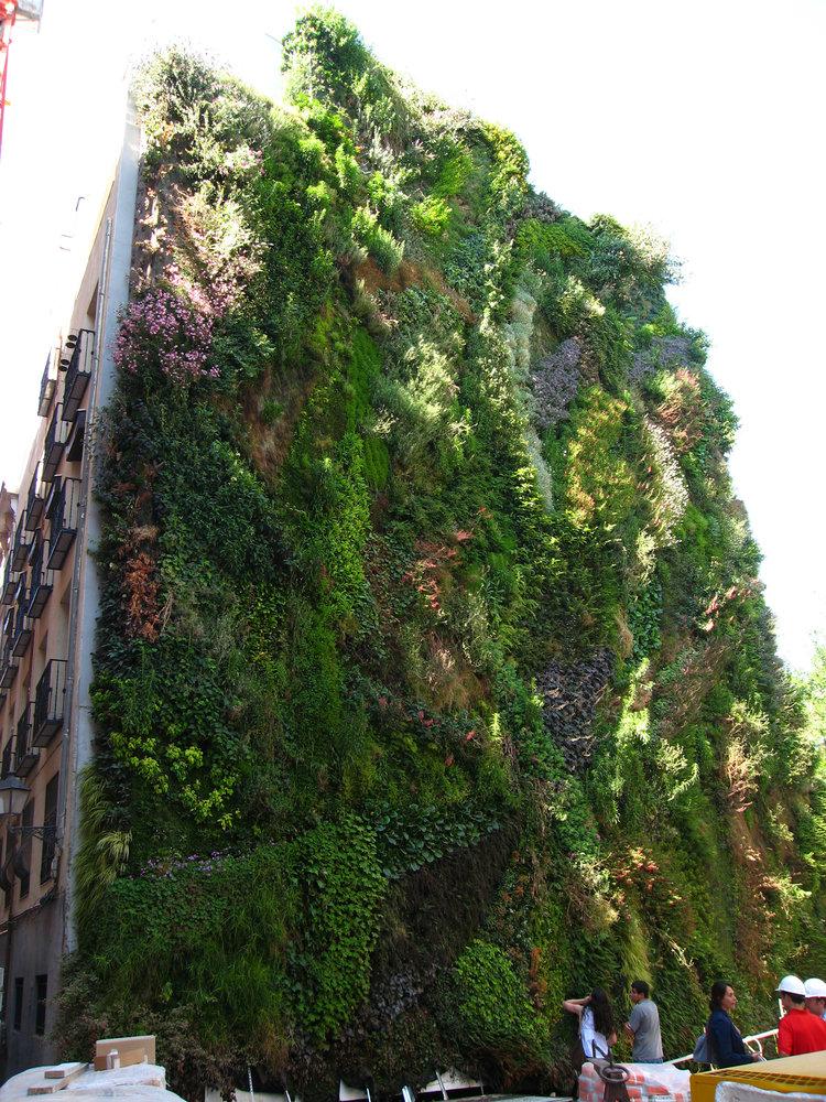 Caixa forum madrid vertical garden patrick blanc for Jardin vertical madrid