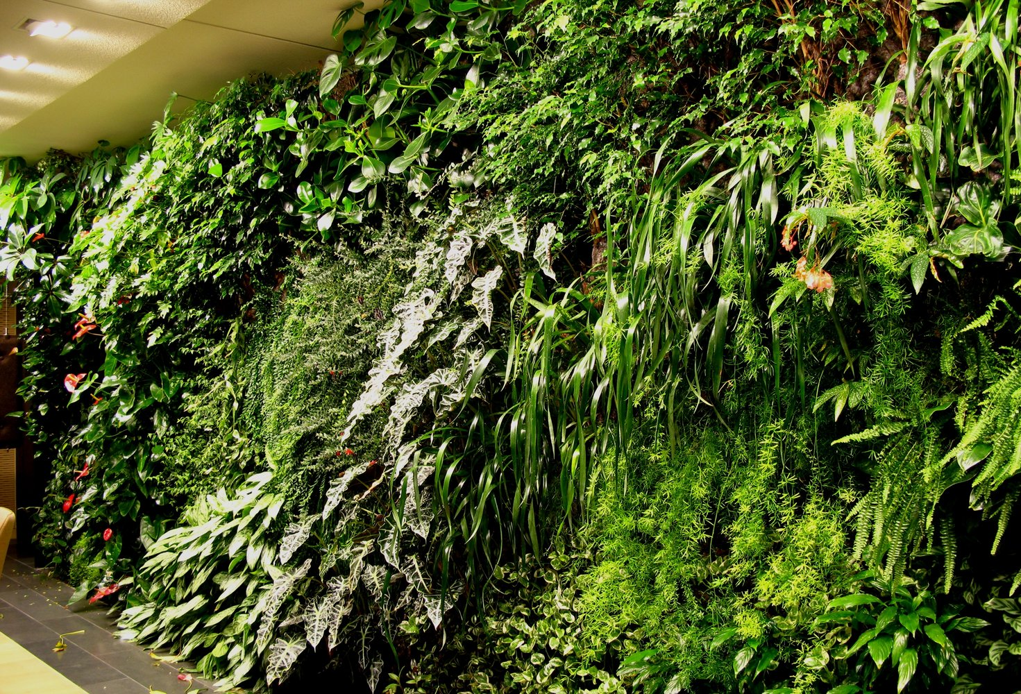 Indoor Vertical Garden