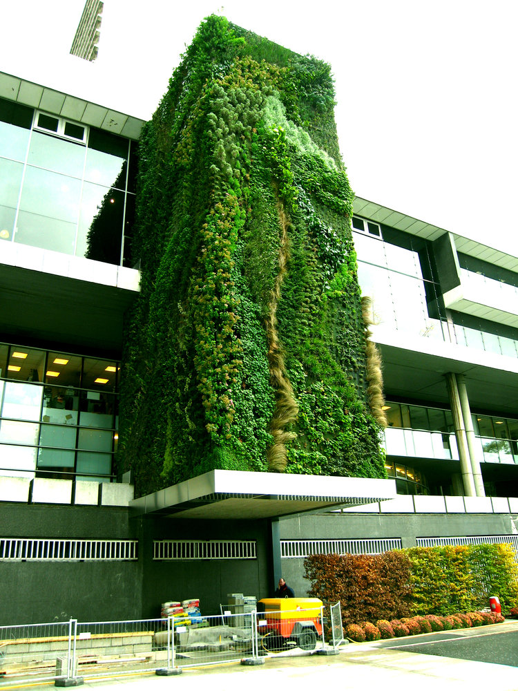Hotel d partement hauts de seine nanterre mur vegetal patrick blanc - Patrick blanc mur vegetal ...