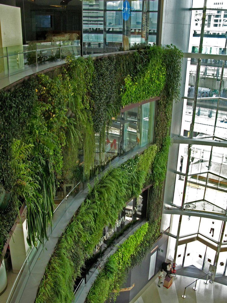 Siam paragon aug 2009 for Vertical green wall