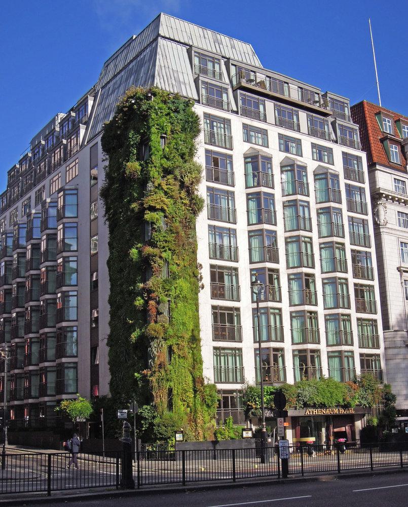 Vertical Garden Park Lane Hotel