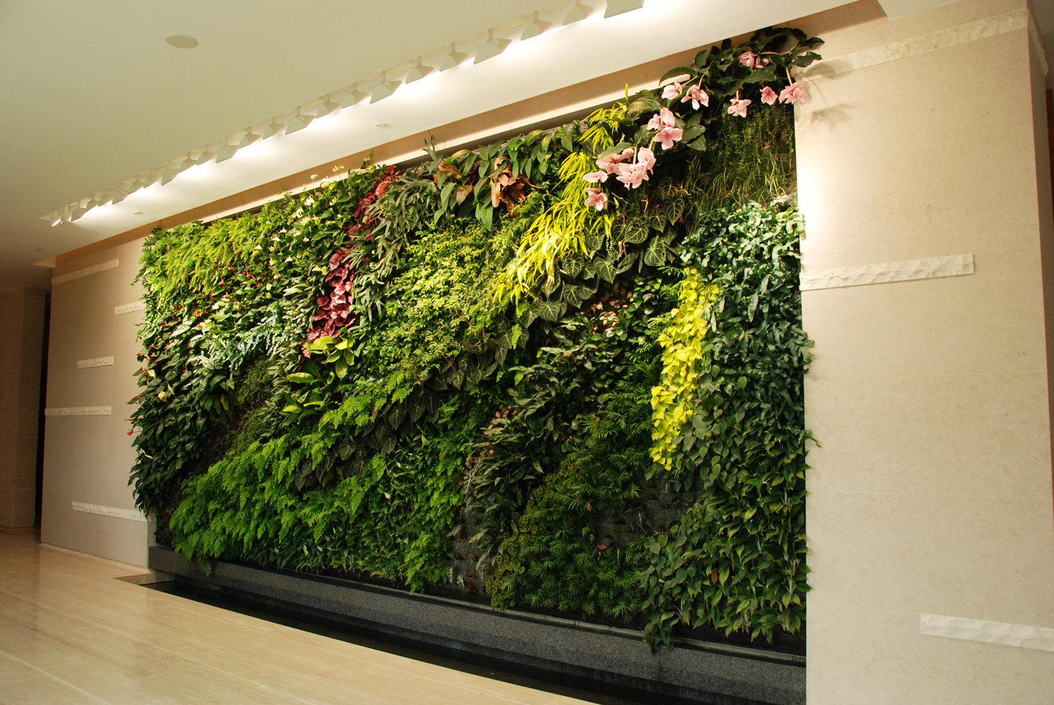 Club house vertical garden le valais hong kong vertical garden patrick blanc - Vertical garden ...