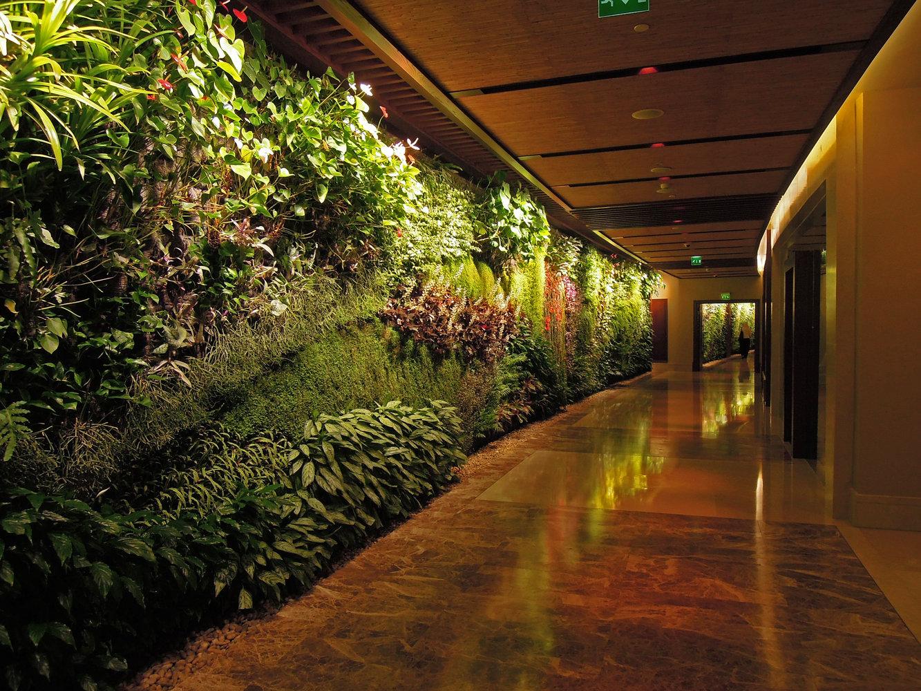 Sofitel palm jumeirah dubai vertical garden patrick blanc colorful living waves in the corridor sofitel palm jumeirah dubai sciox Image collections
