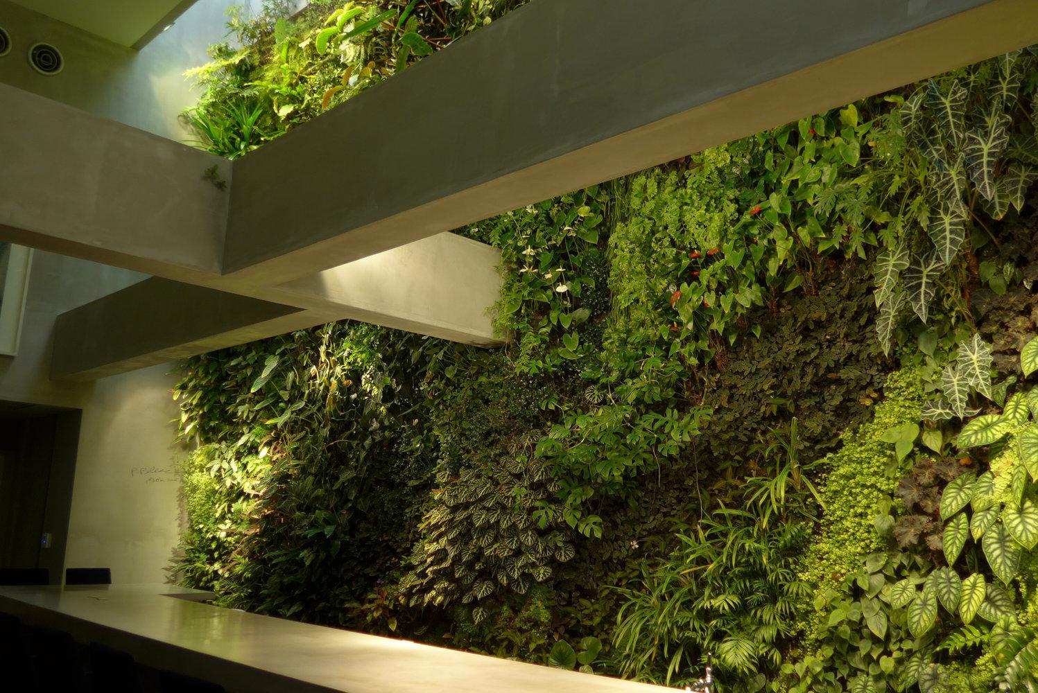 costume national fukuoka vertical garden patrick blanc. Black Bedroom Furniture Sets. Home Design Ideas