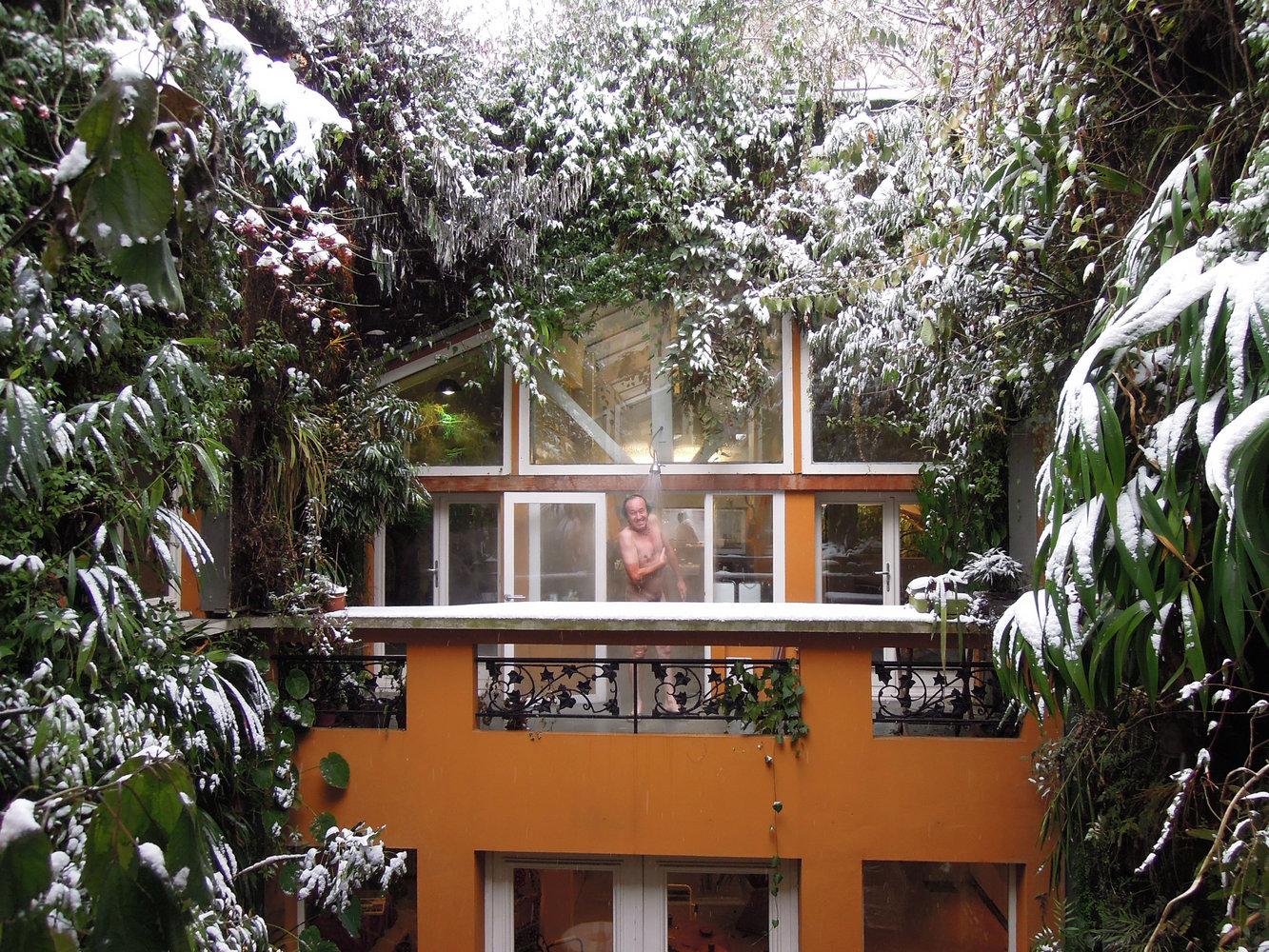 patrick blanc 39 s house vertical garden patrick blanc. Black Bedroom Furniture Sets. Home Design Ideas