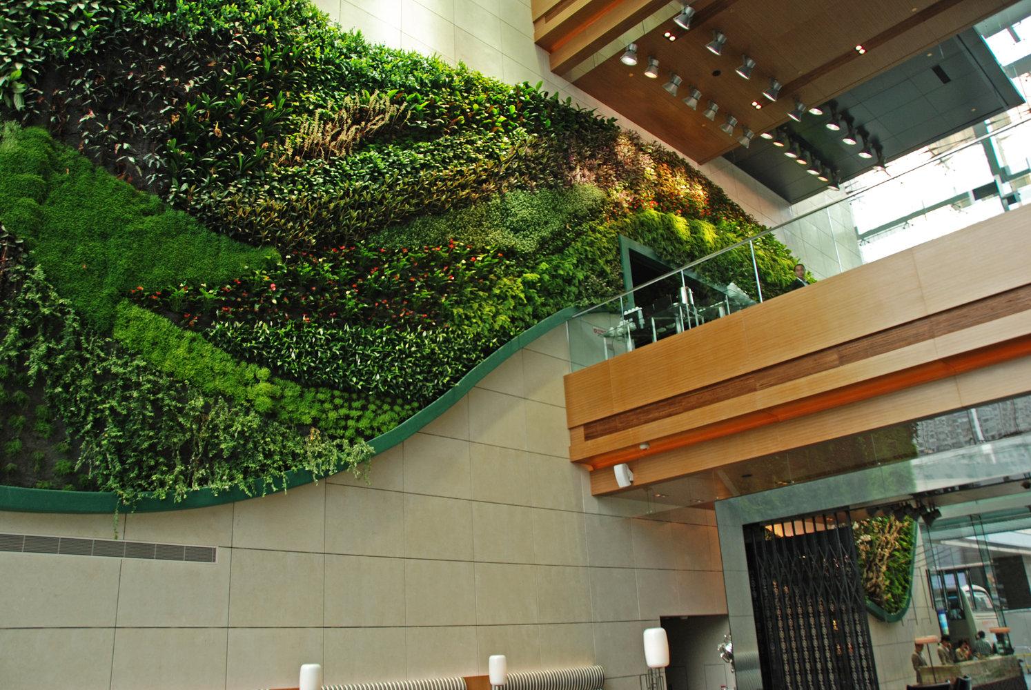icon hotel vertical garden by patrick blanc embracing the bridge hong kong