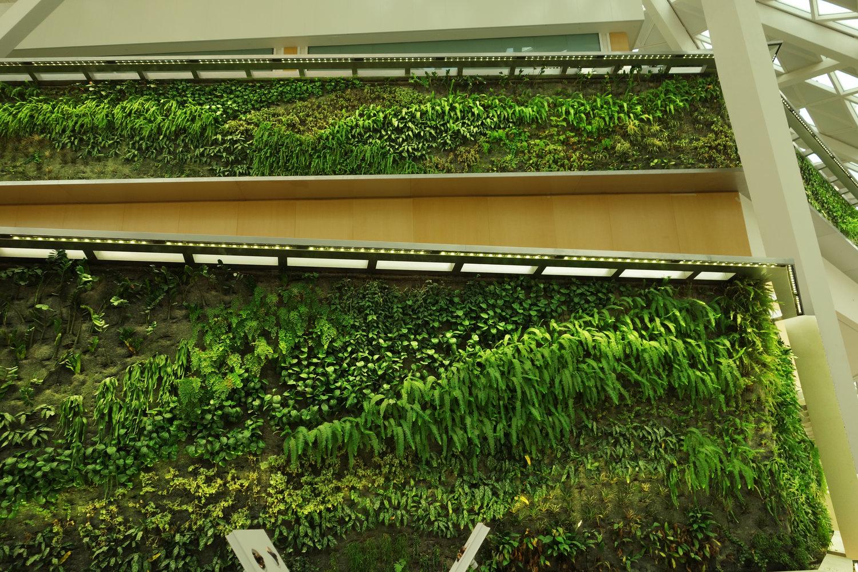 indoor vertical garden at the kafd conference center riyadh