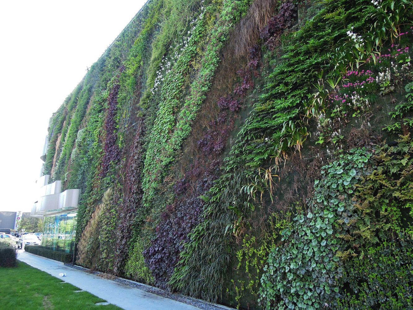 Jupiter, Sainte Genevi u00e8ve des Bois Vertical Garden Patrick Blanc # Cfm Sainte Geneviève Des Bois