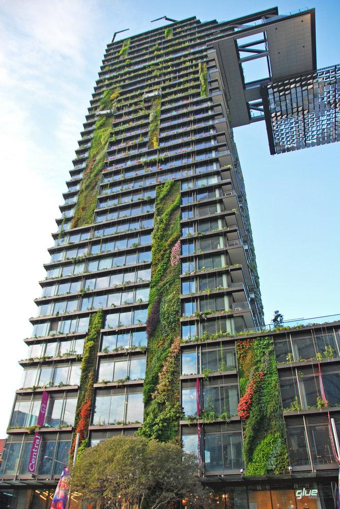 Vertical Garden Building Sydney