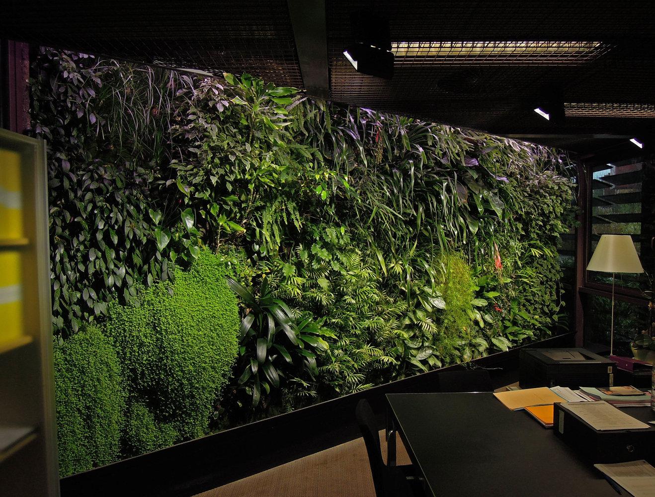 Quai Branly Museum Vertical Garden Patrick Blanc