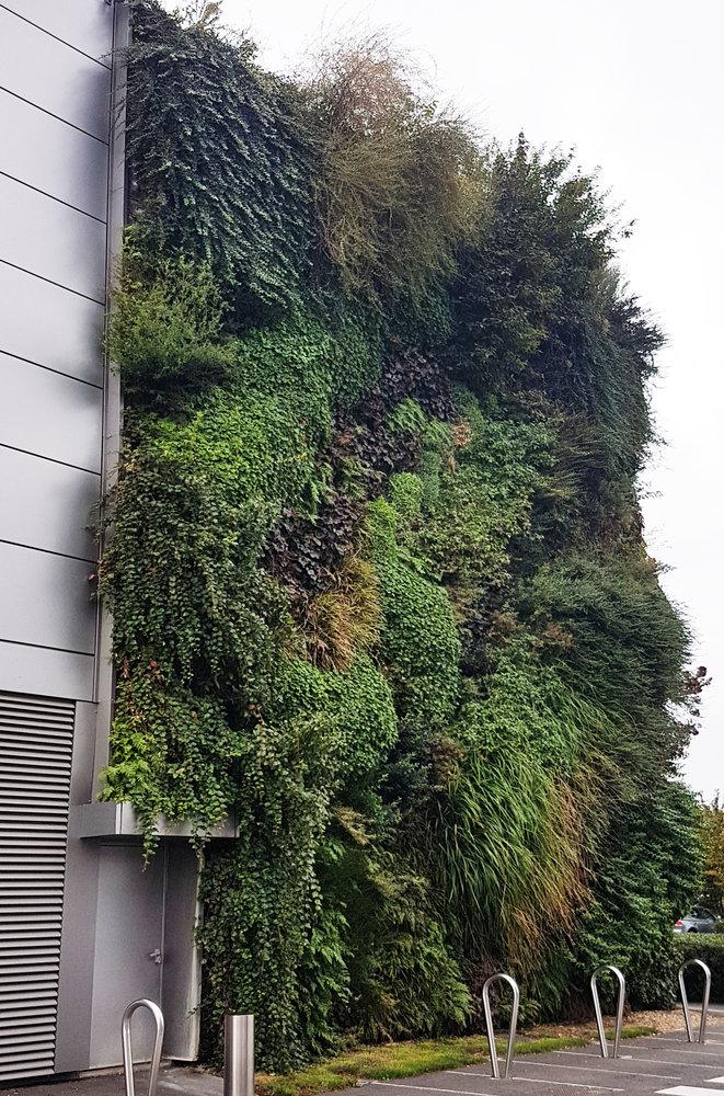 Shopping mall sainte genevi ve des bois vertical garden - Piscine de ste genevieve des bois ...